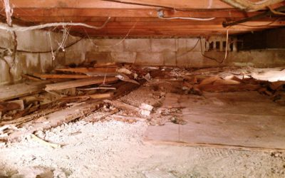 Crawlspace Hazards